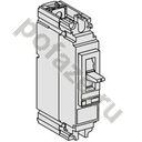 Schneider Electric Compact NS100N 2П 100А 25кА (IP40)